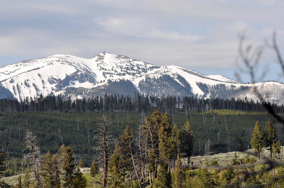Free Yellowstone National Park
