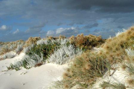 Free Sand dunes on blue sky background