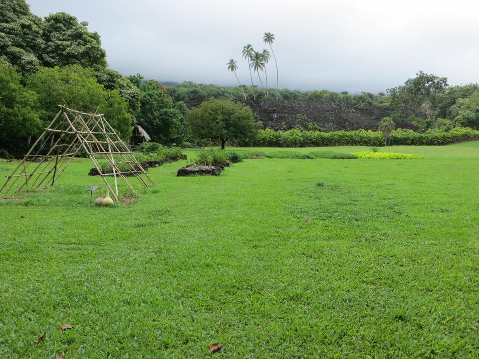 Free Kahanu Garden Hana, Maui