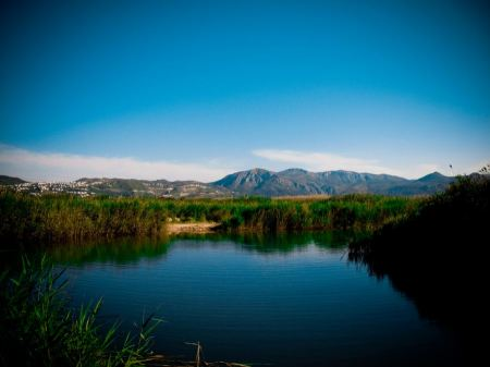 Free Pego-Oliva Marsh Nature Reserve in Spain