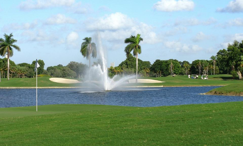 Free Golf course with tropical palm trees and landscaped grass