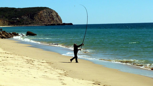 Free fish sea fishing catch fish passion algarve