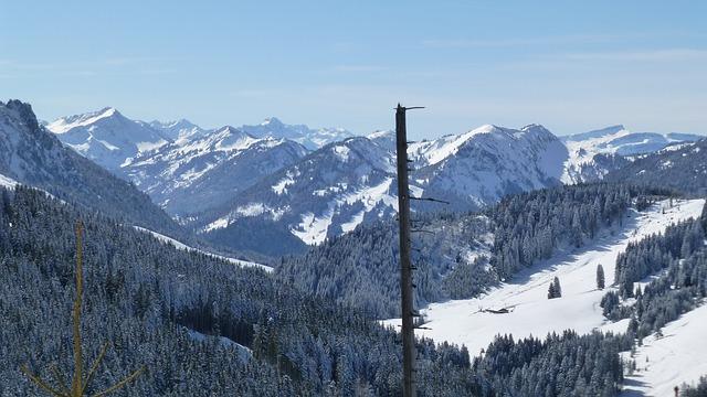 Free allgäu winter mountains sun trees panorama