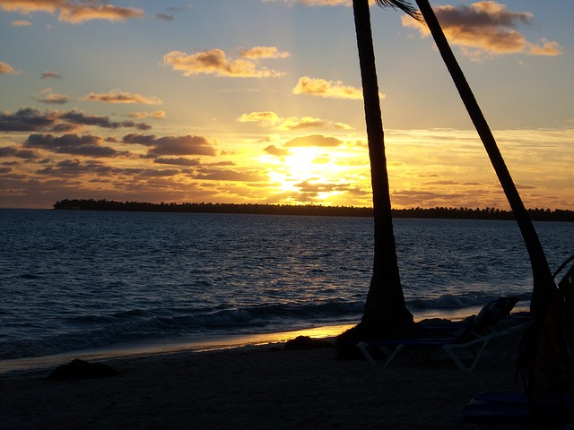 Free beach sunrise palm tree sand island caribbean