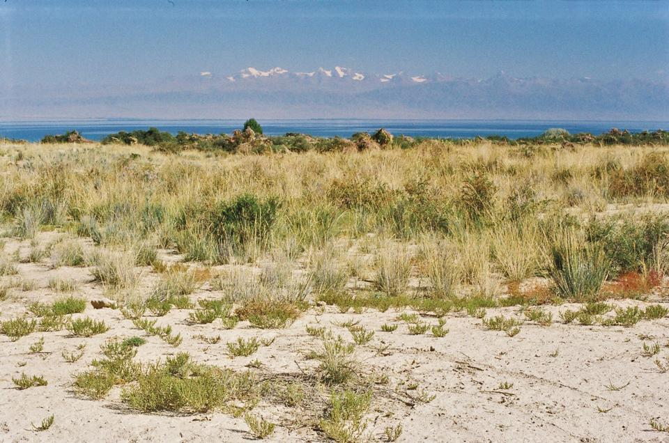 Free Issyk Kul endorheic lake in the northern Tian Shan mountains