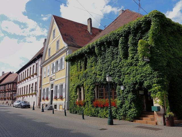 Free lauterbourg france town buildings architecture sky