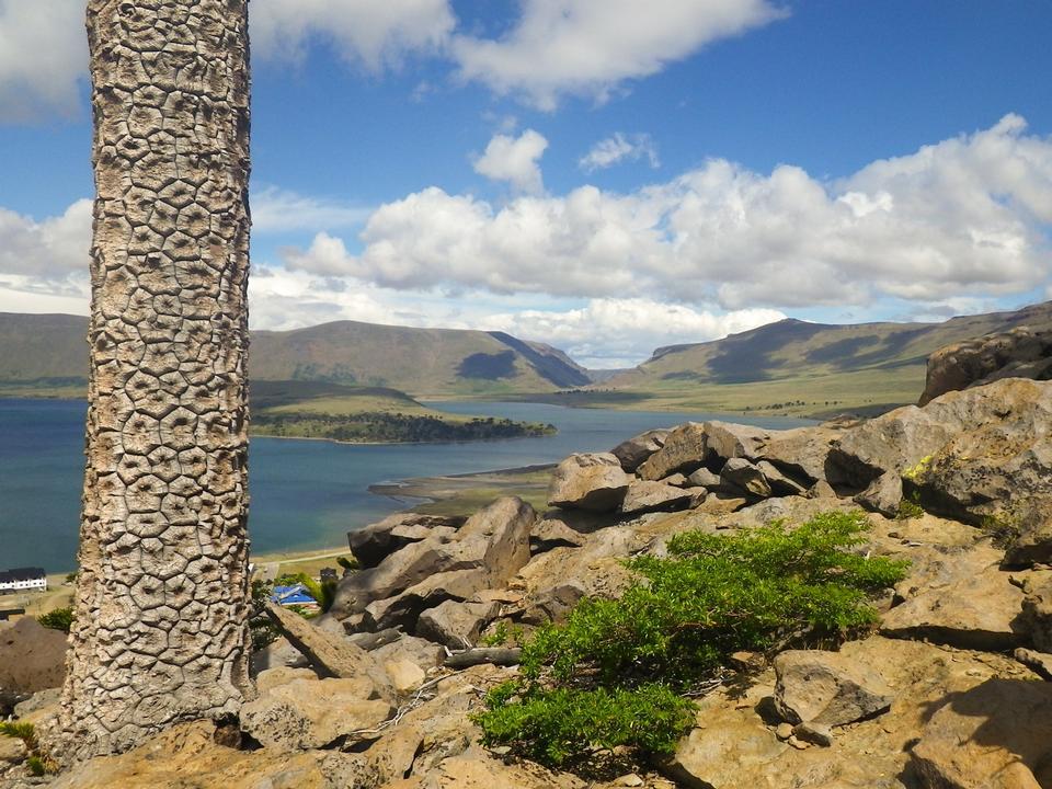Free Caviahue lake, Patagonia, Neuqen. Land of dinosaurs. Provincial P