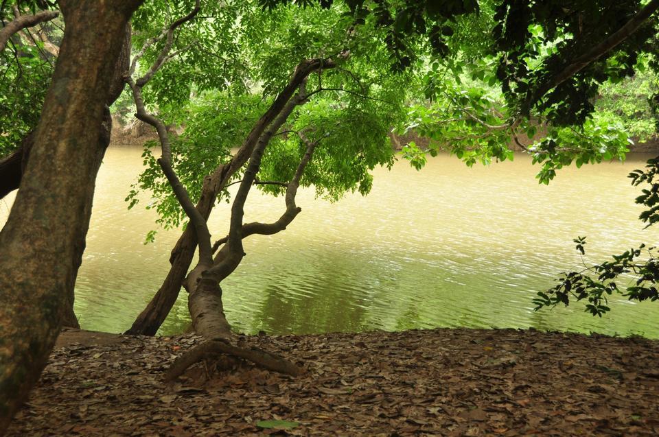 Free Kabini River in India