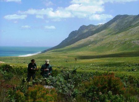 Free Kogelberg Nature Reserve