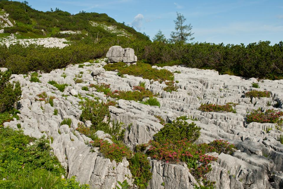 Free Limestone rocks in alps mountains