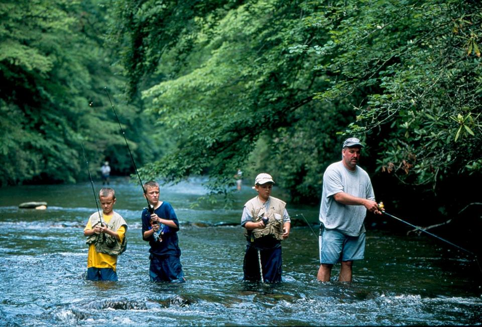 Free Davidson River in the Pisgah National Forest