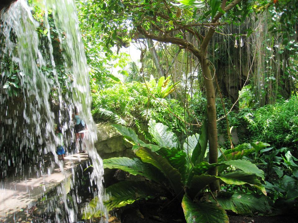 Free Cleveland Botanical Garden, Cleveland, Ohio