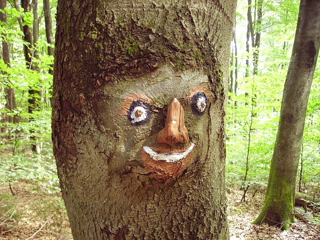 Free wood sculpture carving face art