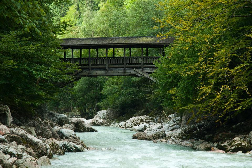 Free Photos: Wooden bridge during sunny morning | eurosnap