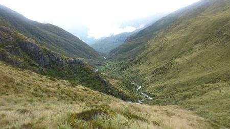 Free Hokitika Gorge, Hokitika, New Zealand