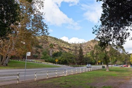 Free hills of Griffith Park, California