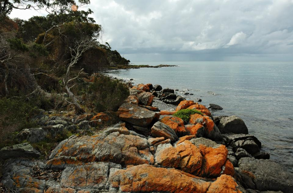 Free The Hazards, on Tasmania's Freycinet Peninsula