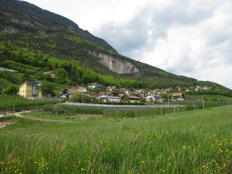 Free Kurtatsch in South Tyrol