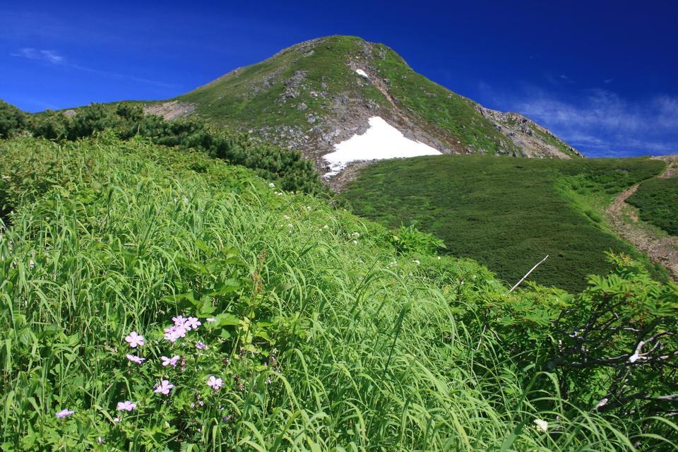 Free Summer mountain, Shirakawa-go, Japan