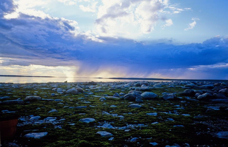 Free Garry Lake in Canada