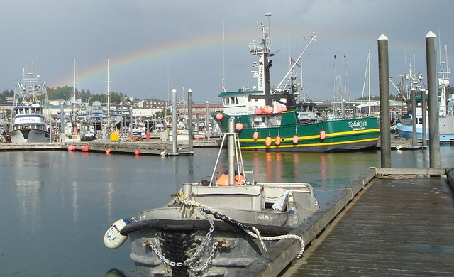 Free kodiak alaska harbor bay water reflections scenic