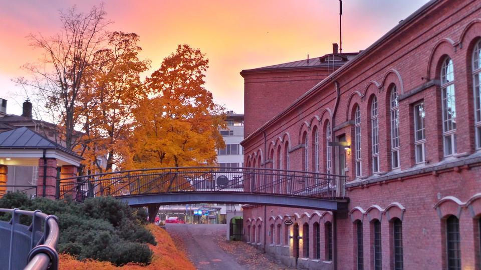 Free Walkway on a  Autumn
