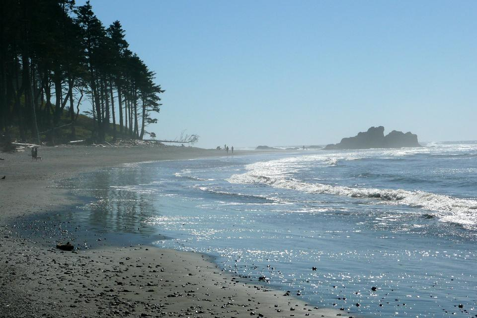 Free Ruby Beach in a Late Afternoon, Olympic National Park