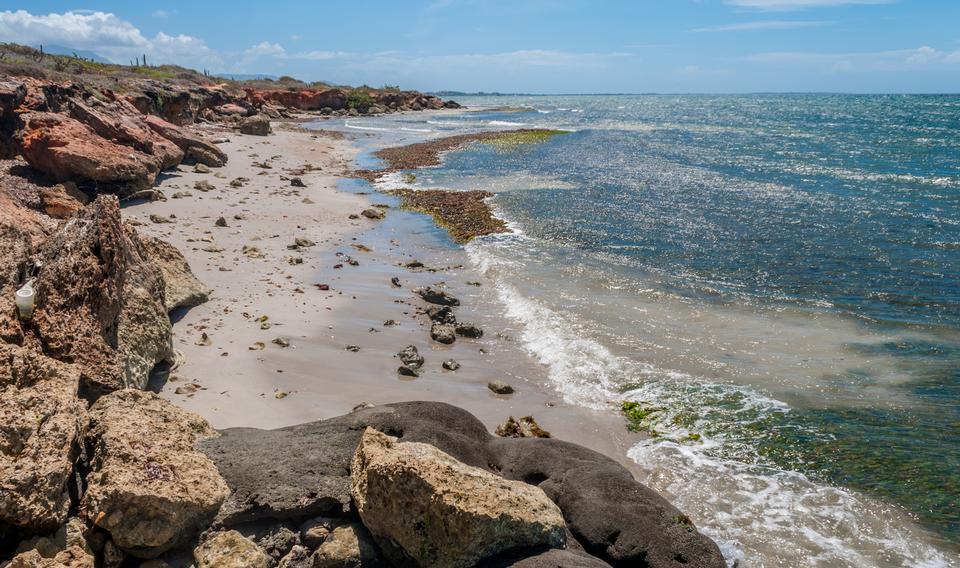 Free El Manglillo bay Margarita Island