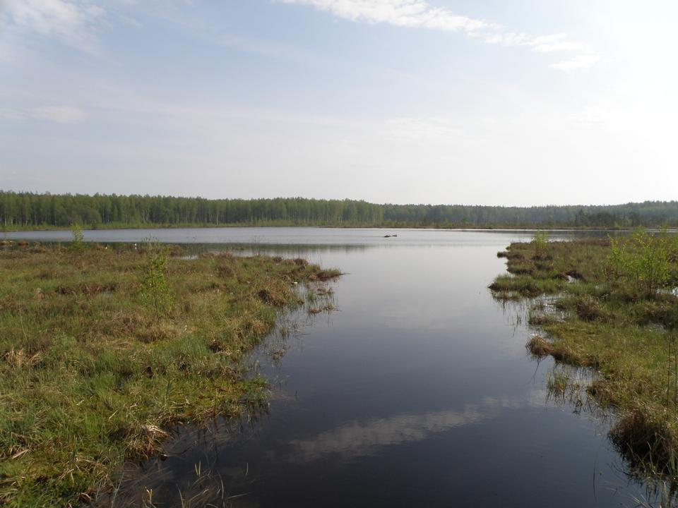 Free Daryino lake in Novki, Russia