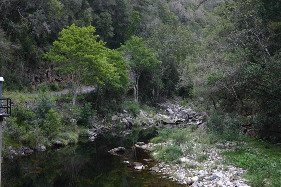 Free Bloukrans River South Africa