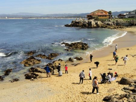 Free Beach in Monterey, California