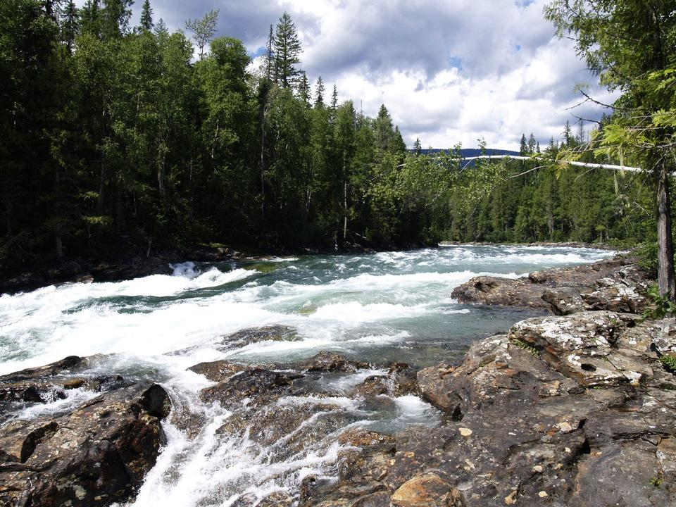 Free Murtle River in BC Canada