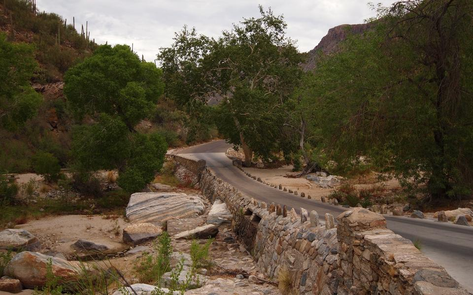 Free Sabino Canyon Walk