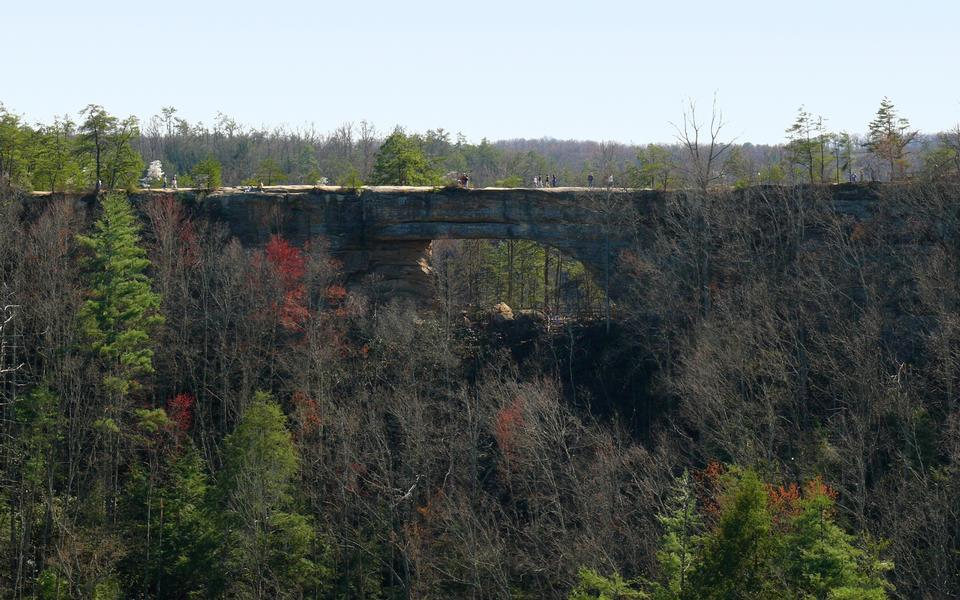 Free Natural Bridge State Park in Kentucky