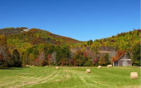 Free Brushy Mountains North Carolina