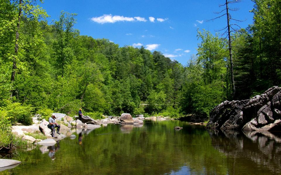 Free Wilson Creek in Pisgah National Forest