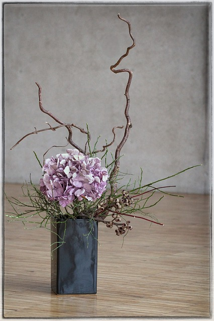 Free ikebana flower beauty japan plant asian
