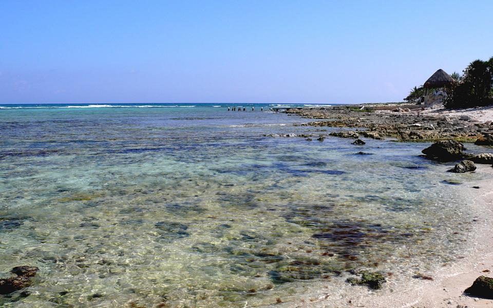 Free Half moon Bay in Akumal Mexico