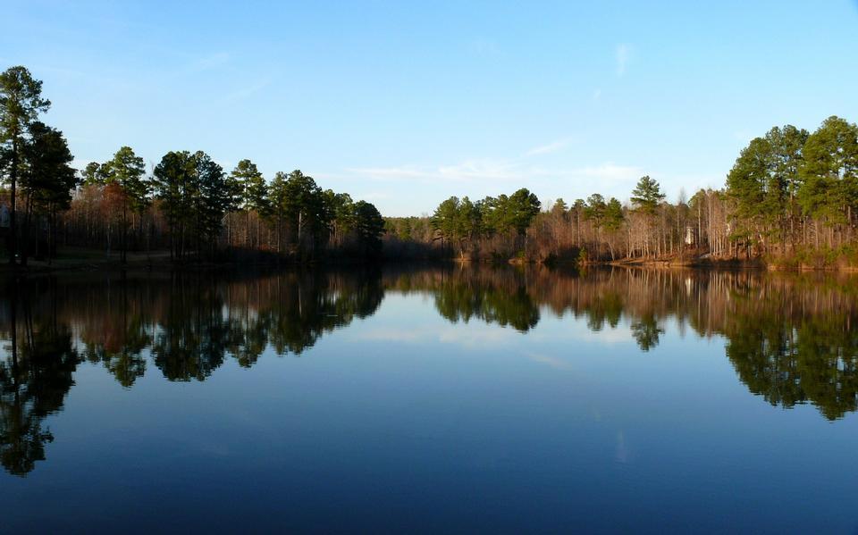 Free An old farm pond