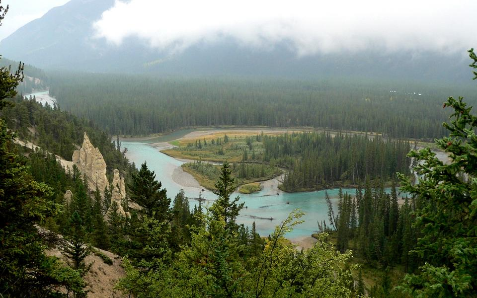 Free Bow River in BC Canada
