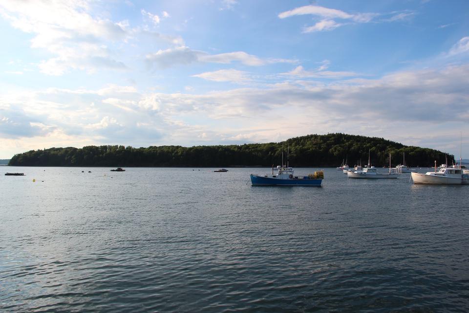 Free Bar Island, Maine
