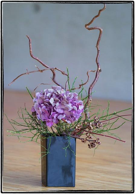 Free ikebana flower violet beauty nature art growth