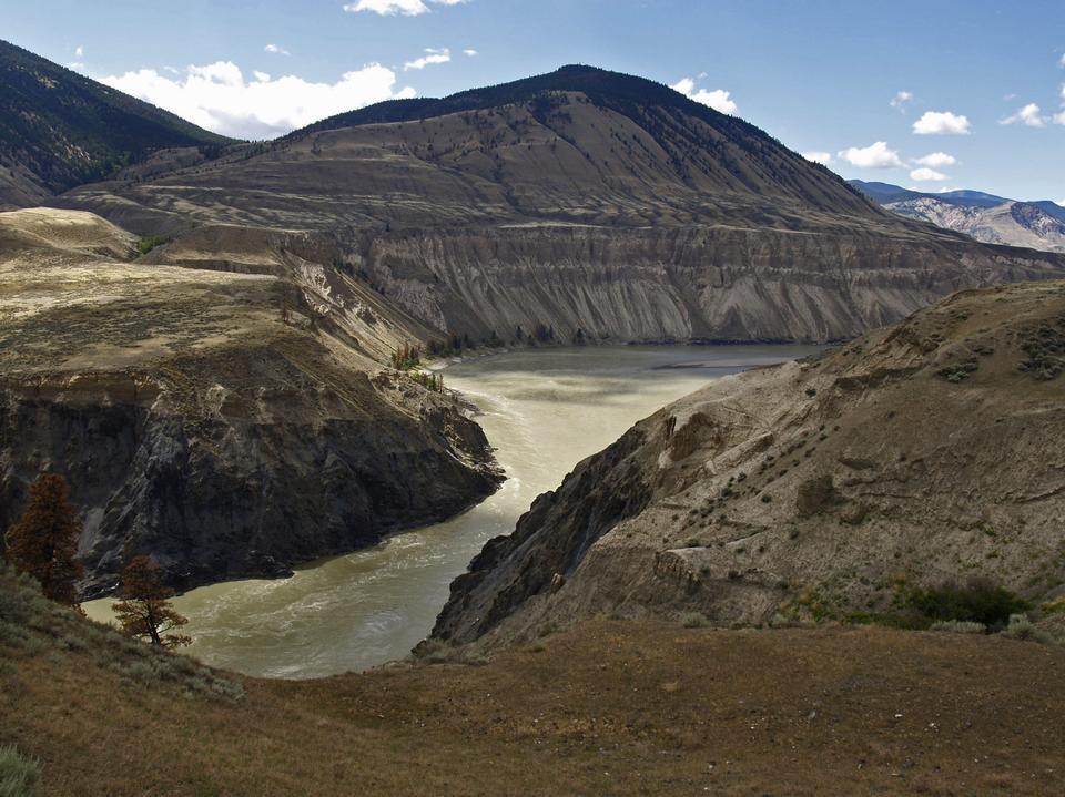 Free Fraser Plateau River British Columbia Canada