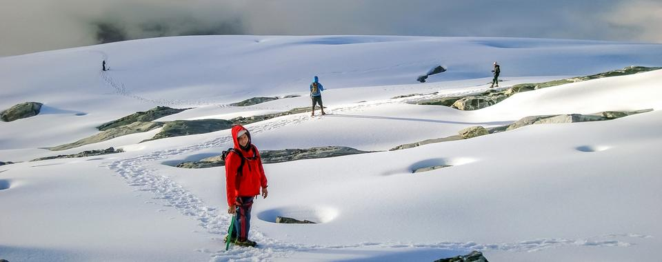 Free Hikers walk in snow mountain Pico Humbold