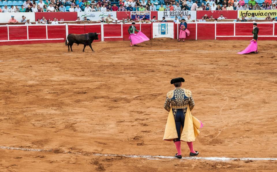 Free Traditional corrida - bullfighting in spain
