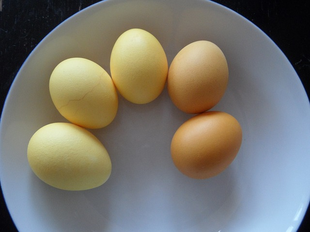 Free easter eggs egg colored yellow easter color bath