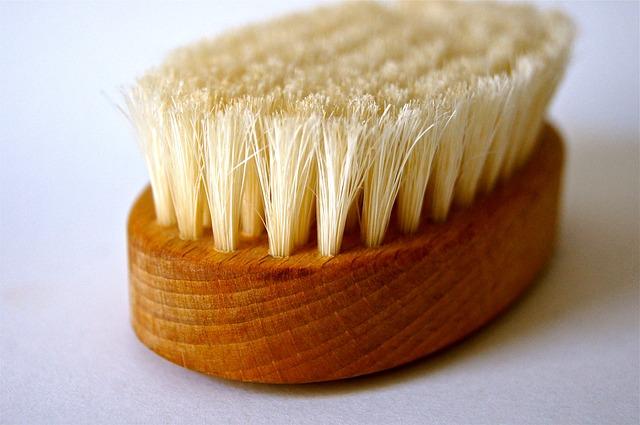 Free brush bad clean spring wood nature wellness