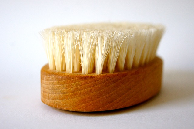 Free brush bad clean spring wood nature wellness