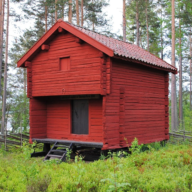 Free sweden building forest trees woods summer spring