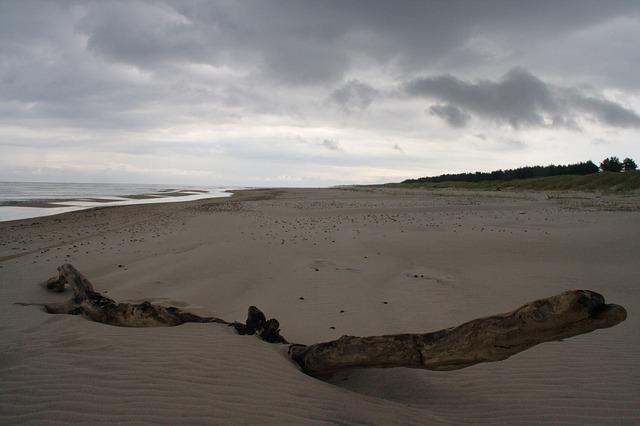 Free beach sand gloomy trist barren baltic sea coast